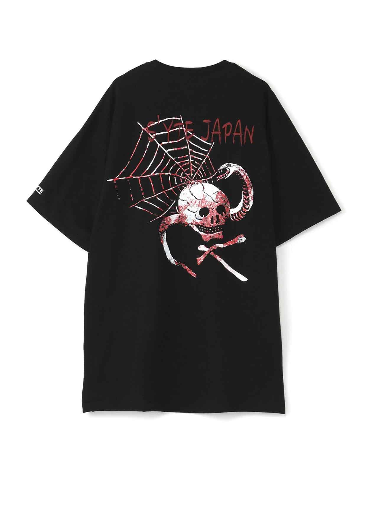 Skull Snake Spider Web