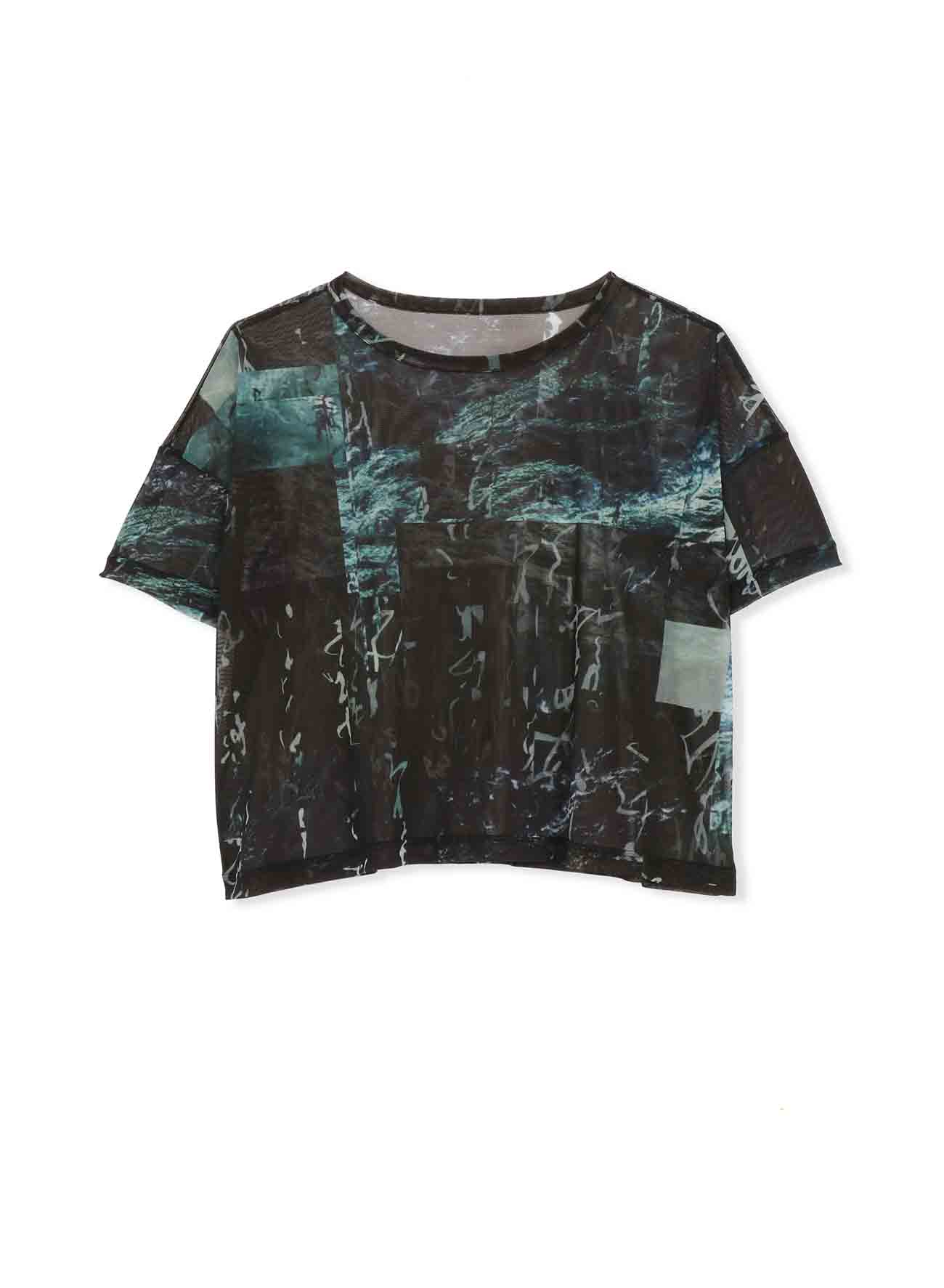 Pe TULLE CALLIGRAPHY TOTAL PATTERN SHORT SLEEVE